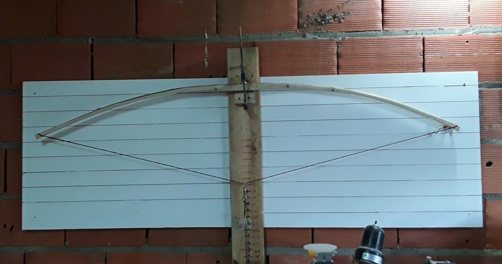 Arco de Laurel. Intercambio de arcos 2019 gabriel87 20190510