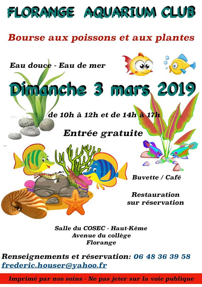 Bourse de FLORANGE (57) - 03 mars 2019 46855611
