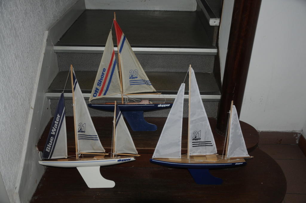 Skipper Dsc_7813
