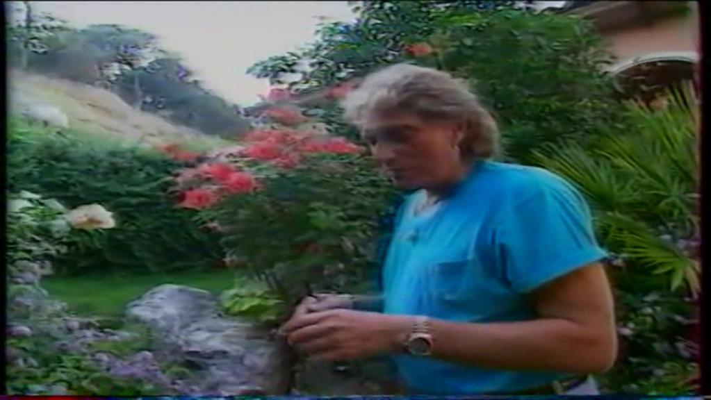 PROPRIETE OU A RESIDE JOHNNY HALLYDAY ( 2/10 ) 'LA LORADA' ( 1990-2000 ) 10810