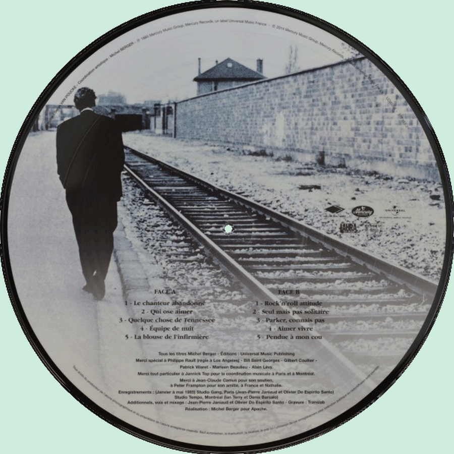 Picture disc officiel ( Universal, Sony, Warner ) 2014_r13
