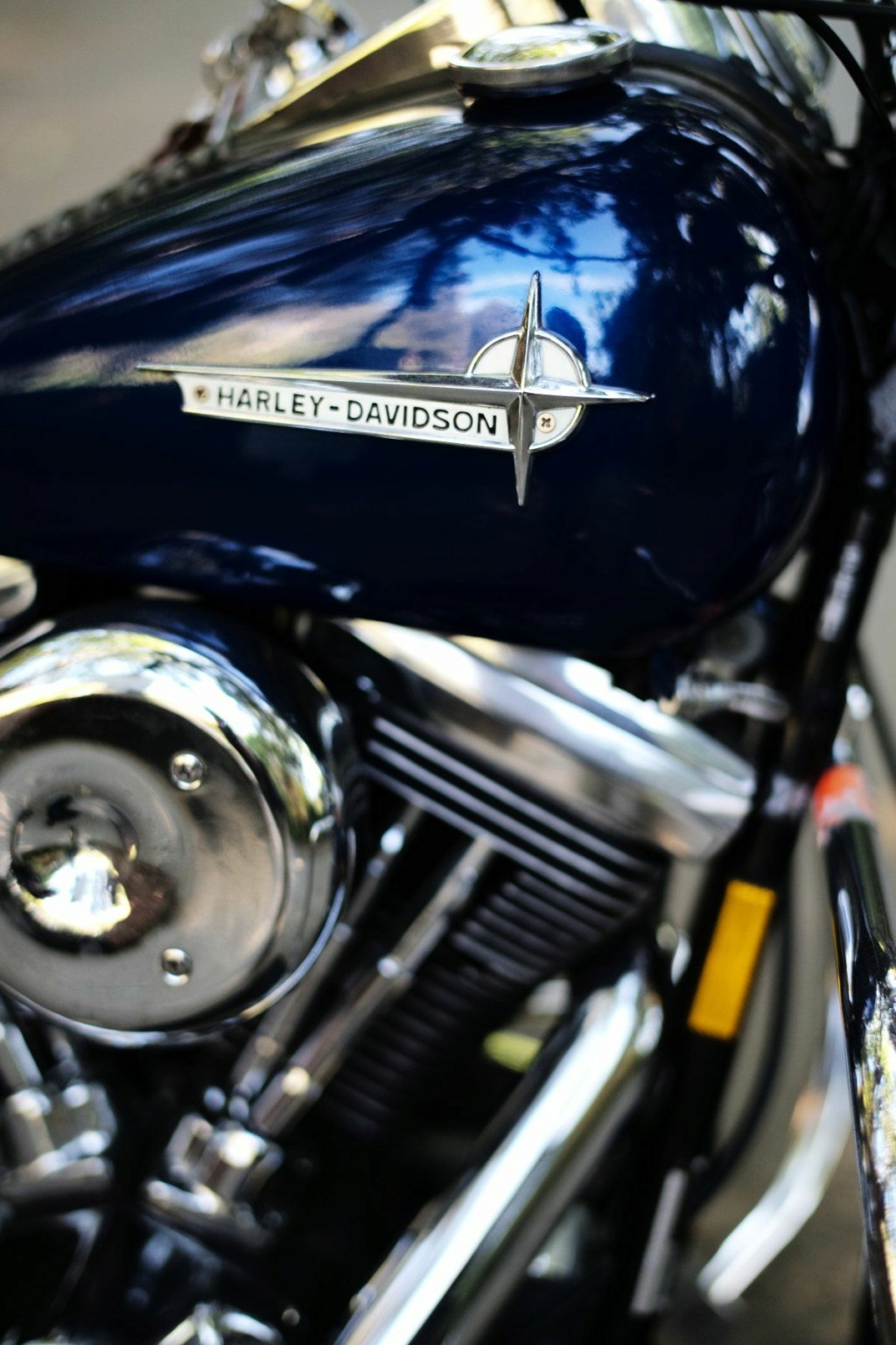 HARLEY DAVIDSON SOFTAIL SPRINGER 1340 CC DE JOHNNY HALLYDAY ( 1989 ) 3118_115