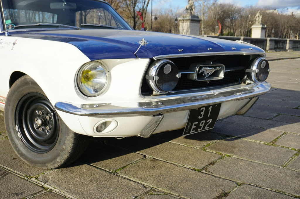 FORD MUSTANG GT 390 COUPE DE JOHNNY HALLYDAY ( 1967 ) 3980_135