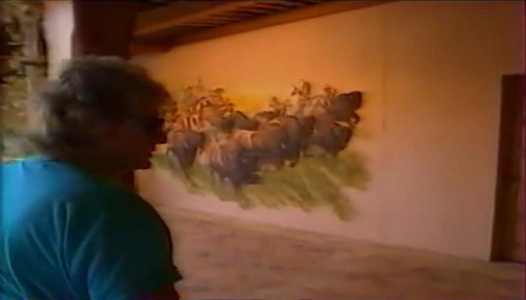 PROPRIETE OU A RESIDE JOHNNY HALLYDAY ( 2/10 ) 'LA LORADA' ( 1990-2000 ) 6511