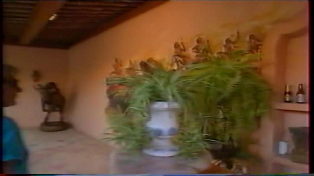 PROPRIETE OU A RESIDE JOHNNY HALLYDAY ( 2/10 ) 'LA LORADA' ( 1990-2000 ) 6910