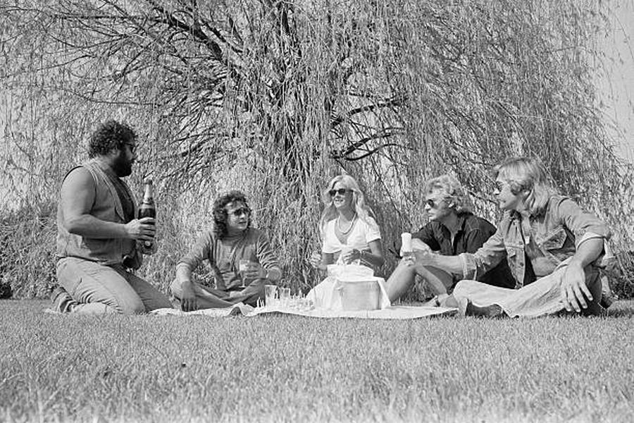 LES CONCERTS DE JOHNNY 'BEZIERS 1974' Getty474