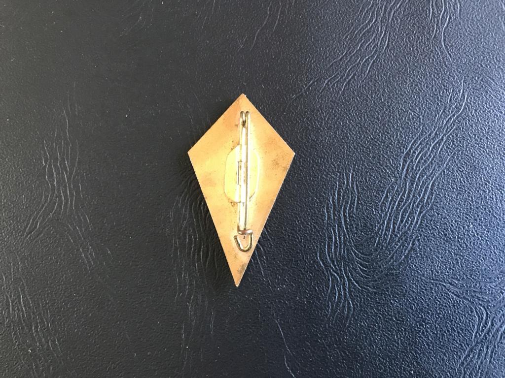 Insigne Chasseur Alpin 06c13510