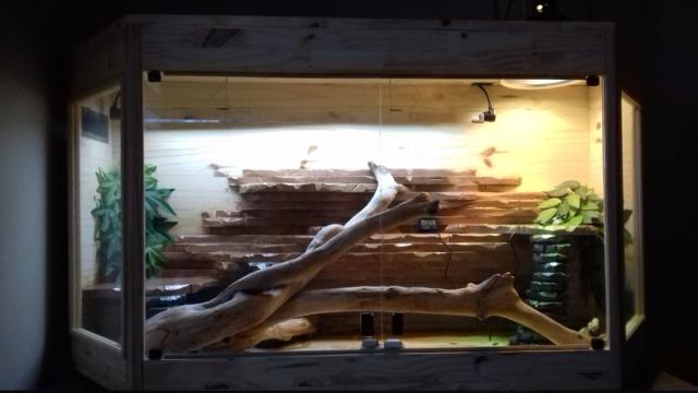 Mon terrarium Maison 20180625