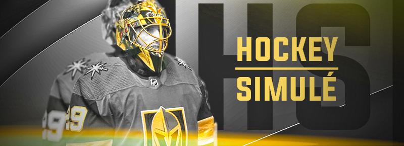 Hockey Simule