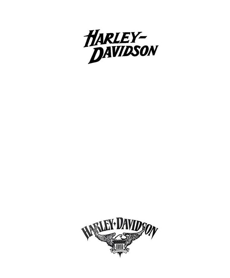 Harley Iron 883 au 1/9 Decals10