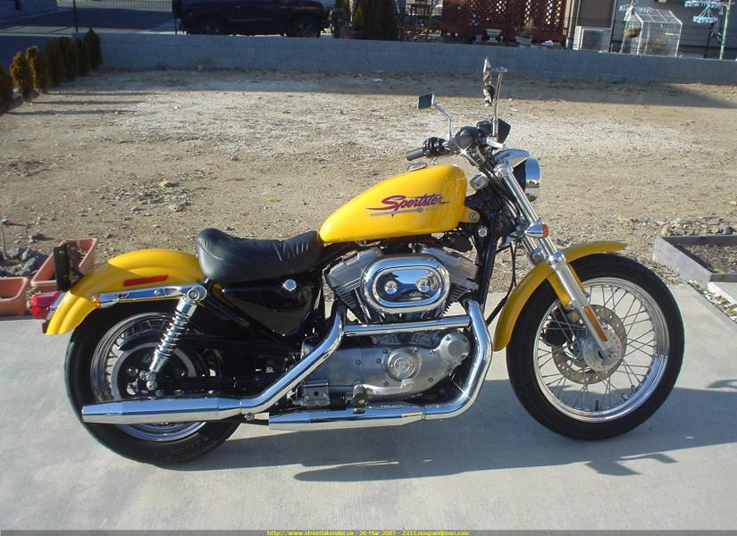 Harley Iron 883 au 1/9 Mini_h10