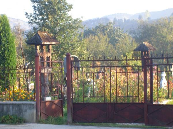 Quelques photos de mon périple dans les Carpates Cimeti10