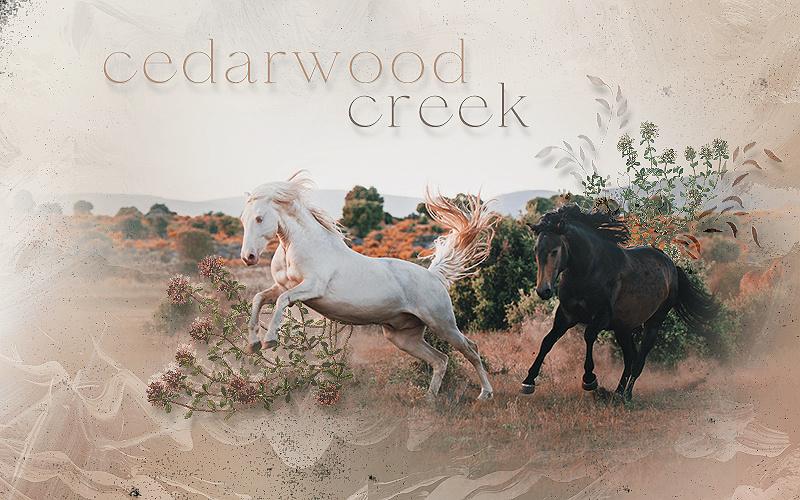 CEDARWOOD CREEK
