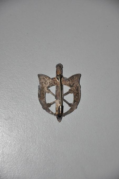 Insignes des postes militaire et Alpin Dsc_0017