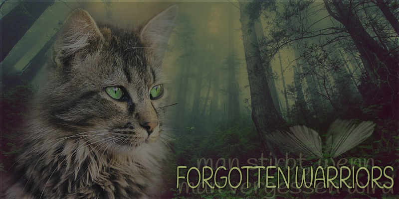 Forgotten Warriors Header17