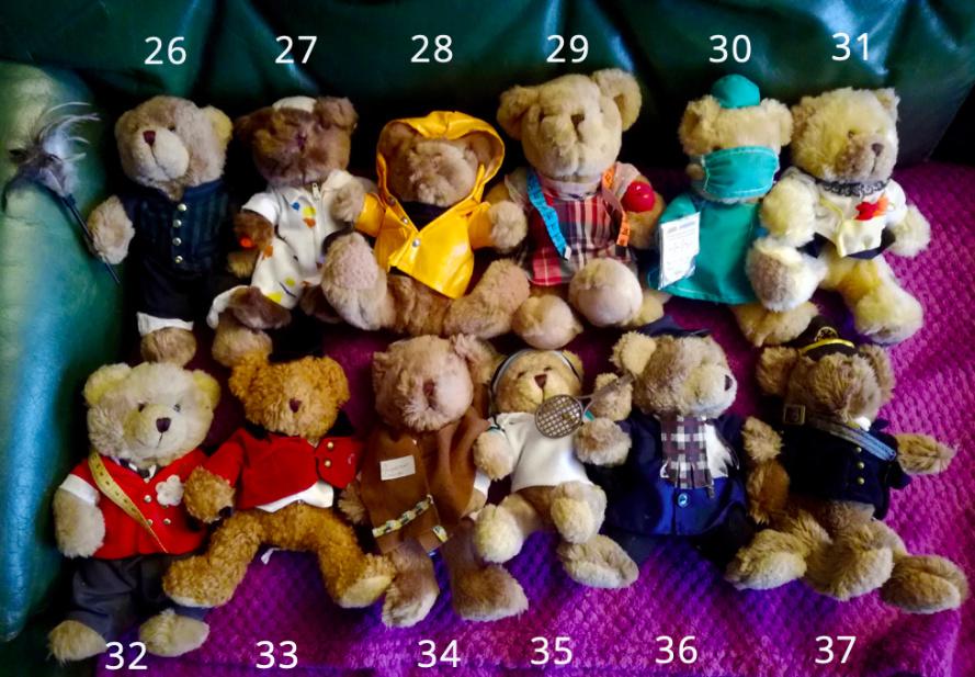50 jolis ours à vendre pour soutenir nos 4 pattes ! 310