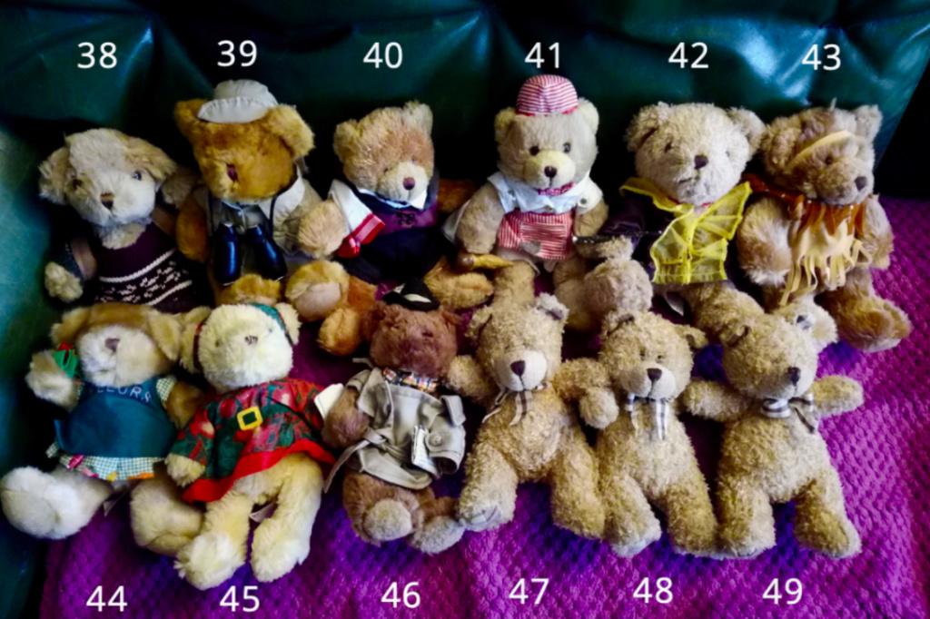 50 jolis ours à vendre pour soutenir nos 4 pattes ! 410