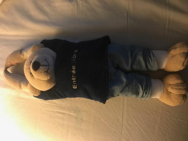 50 jolis ours à vendre pour soutenir nos 4 pattes ! Img_3610