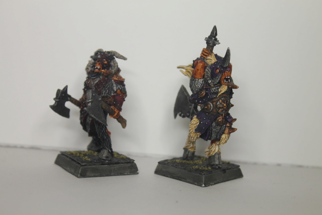 Doc's Beastmen Warband Img_1519