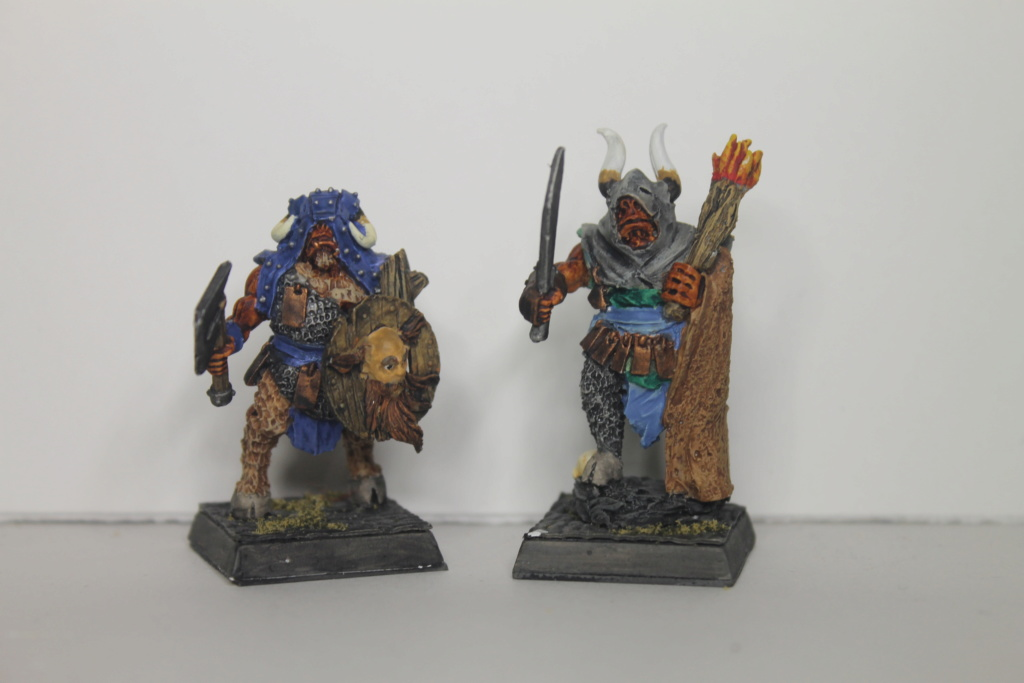 Doc's Beastmen Warband Img_1520