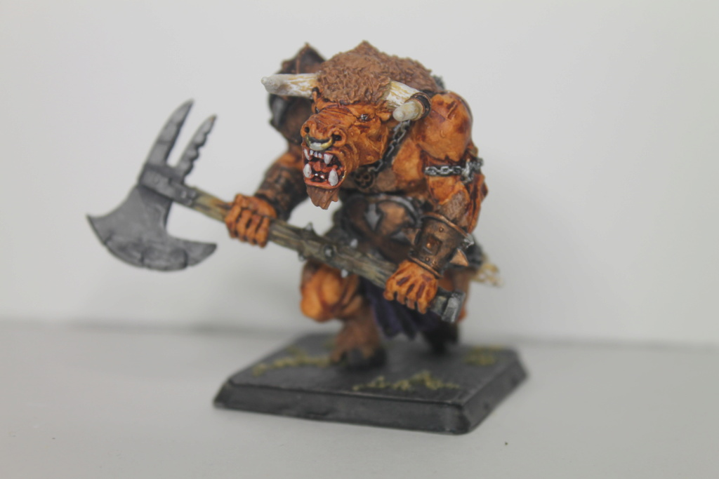 Doc's Beastmen Warband Img_1521