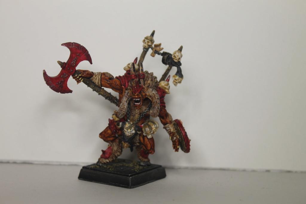 Doc's Beastmen Warband Img_1522