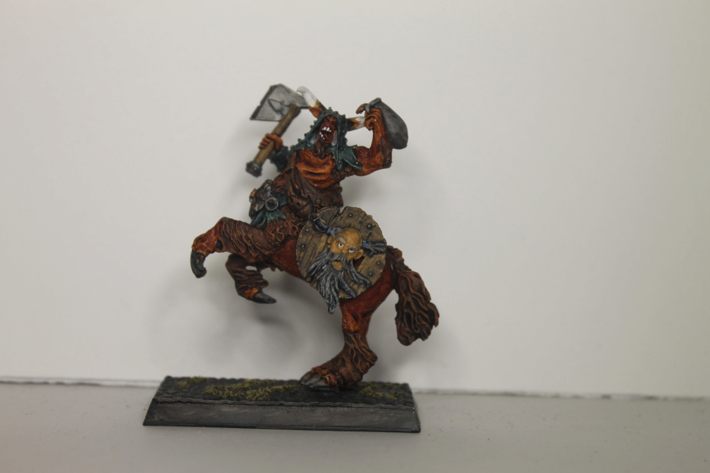 Doc's Beastmen Warband Img_1523