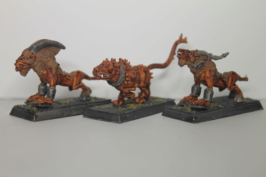 Doc's Beastmen Warband Img_1525
