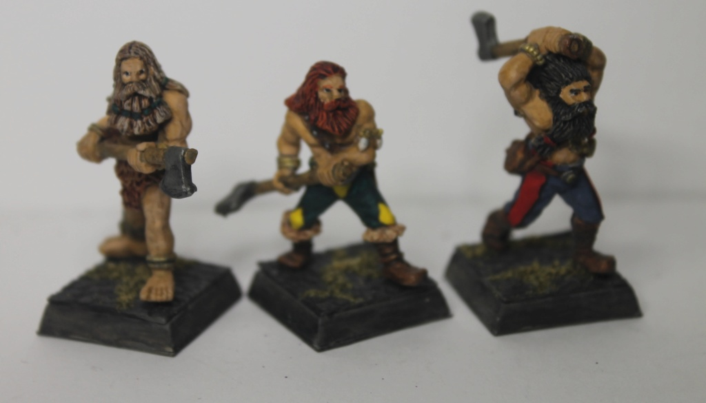 Doc's Norse Warband Img_1616