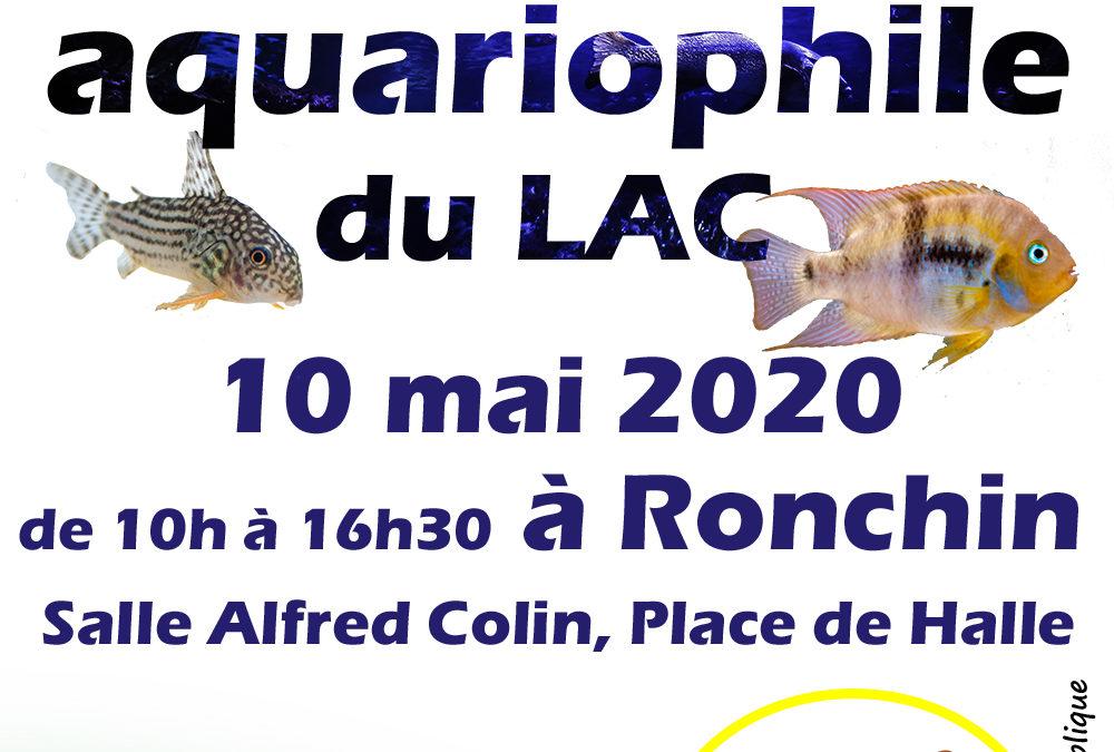 6ème bourse aquariophile à Ronchin (59) Bourse10