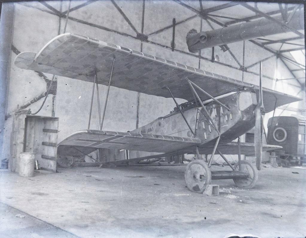 Avion allemand camouflé première guerre mondiale  Img_2058