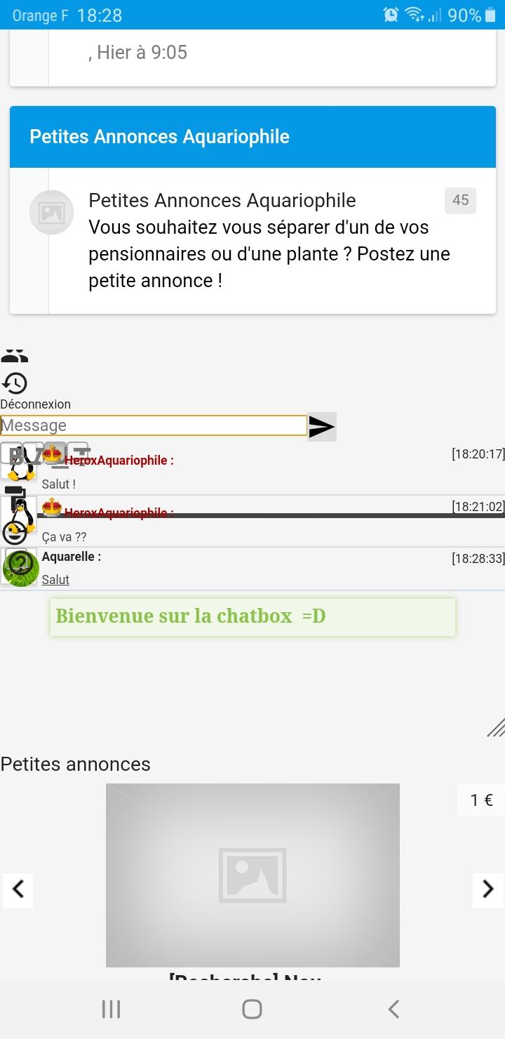 Bug avec le widgets de la chatbox sur la version mobile Screen10