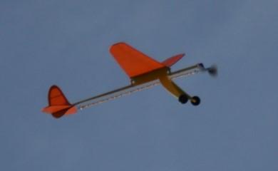 Free Flight Modelling Firefl15