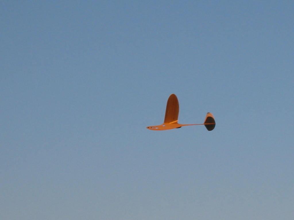 Free Flight Modelling Hervat10