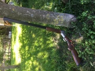 Silver pigeon 1 calibre 28 934f0010