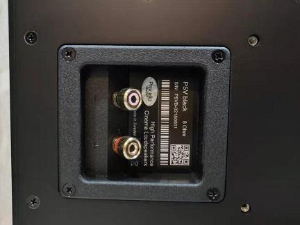 Procella Audio P5v (Used Unit) Serial10