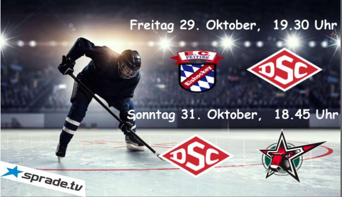 Eishockey Deggendorf Nzichs10
