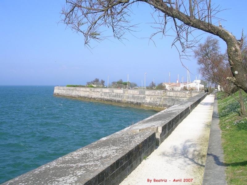Île de Ré, Charentes-Maritimes, France Le_fro10