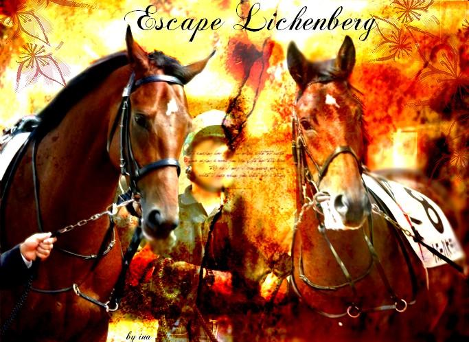 BOX DE ESCAPE LICHENBERG Escape10