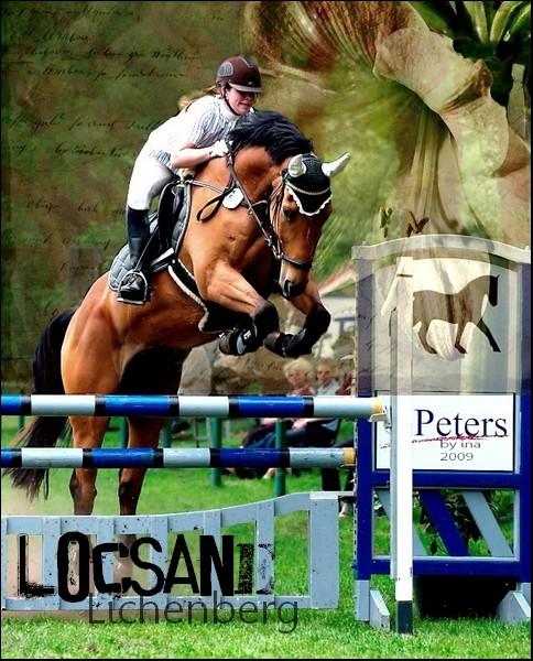 BOX DE LOCSANE LICHEMBERG Locsan10