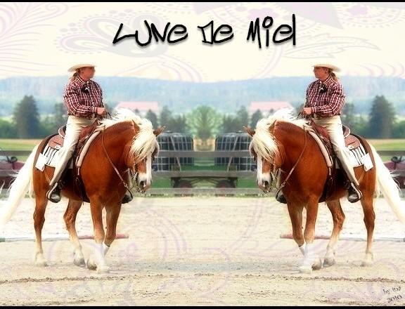 BOX DE LUNE DE MIEL Lune_d10