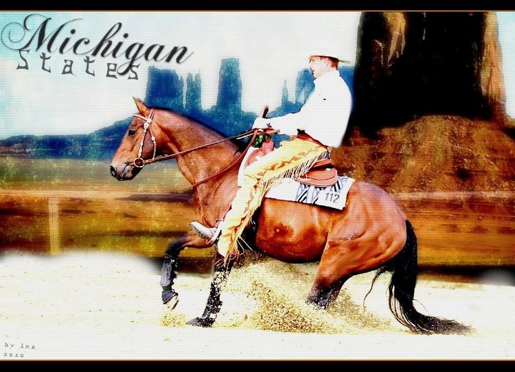 BOX DE MICHIGAN STATES Michig10