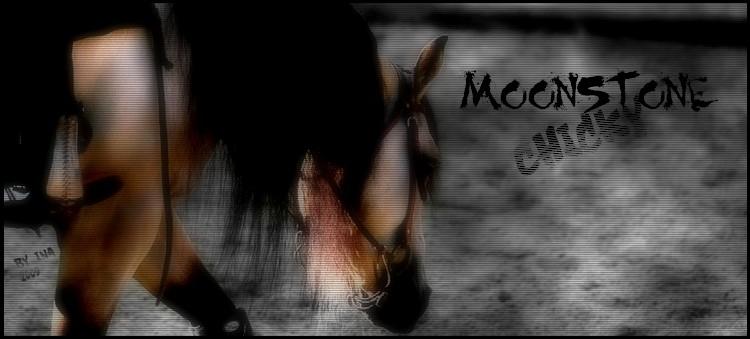 BOX DE MOONSTONE CHICKY Moonst10