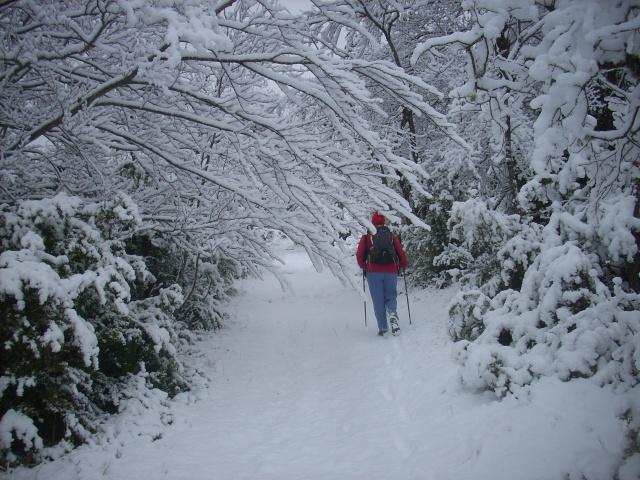 notre village sous la neige. Puy_de11