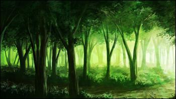 Forêt de Doln