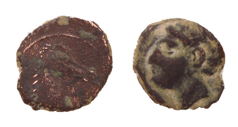 Cuarto de calco hispanocartaginés (r: prótome) P5060010