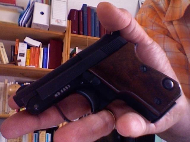 Le pistolet ou revolver de sac à main idéal Photo_14