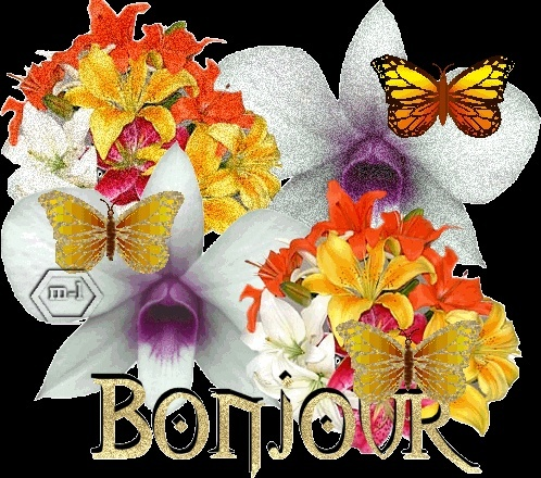 janvier  2010 Bouque10