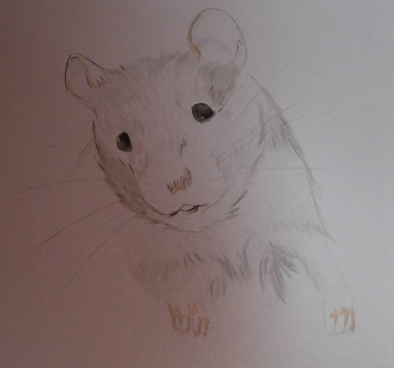 Réalise dessin, portrait, retouche photo Dscn4711