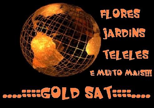 ...:::GOLD SAT:::...